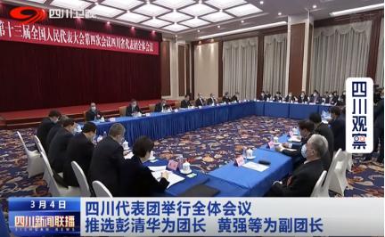 四川代表团举行全体会议  推选彭清华为团长 黄强等为副团长