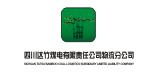 四川达竹煤电(集团)有限责